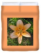 Asiatic Lily With Poster Edges Duvet Cover