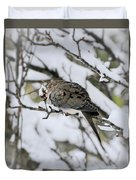 Asleep In The Snow - Mourning Dove Portrait Duvet Cover