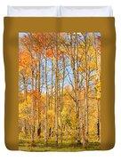 Aspen Fall Foliage Vertical Image Duvet Cover