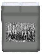 Aspen Forest Black And White Print Duvet Cover