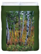 Aspen In Fall Duvet Cover