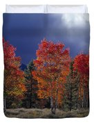 Aspen Light Duvet Cover