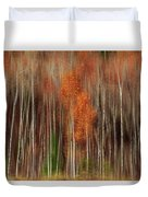 Aspen Motion II, Sturgeon Bay Duvet Cover