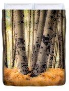 Aspen Trees With Ferns Duvet Cover