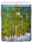 Aspens At Pine Creek Basin Duvet Cover