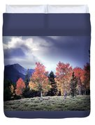 Aspens In Autumn Light Duvet Cover