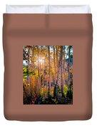 Aspens In Fall Color Duvet Cover