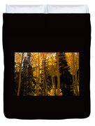 Aspens In Fall Duvet Cover