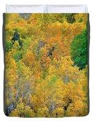 Aspens In Fall Eastern Sierras California Duvet Cover