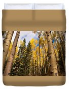 Aspens In Santa Fe 3 Duvet Cover