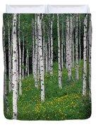 Aspens In Spring Duvet Cover