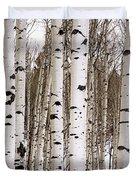Aspens In Winter Panorama - Colorado Duvet Cover