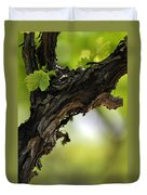 At Lachish Vineyard Duvet Cover