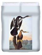 Audubon: Anhinga Duvet Cover