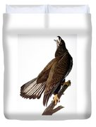 Audubon: Bald Eagle Duvet Cover