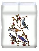 Audubon: Bluebirds Duvet Cover