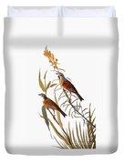 Audubon: Dickcissel Duvet Cover