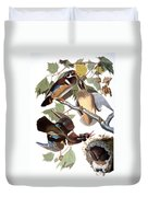 Audubon: Duck Duvet Cover