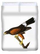 Audubon: Hawk, 1827 Duvet Cover