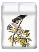 Audubon: Hawk Duvet Cover