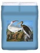 Audubon: Ibis Duvet Cover