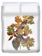 Audubon: Jay Duvet Cover