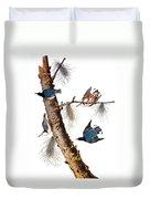 Audubon: Nuthatch Duvet Cover