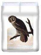 Audubon Owl Duvet Cover