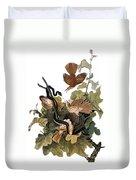 Audubon: Thrasher Duvet Cover
