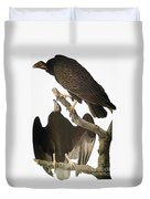 Audubon: Turkey Vulture Duvet Cover