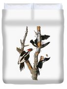 Audubon: Woodpecker Duvet Cover