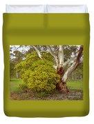 Australian Wattles Bush And Candlebark Gum Tree Duvet Cover