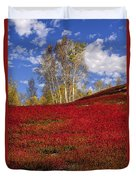 Autumn Birches And Barrens Duvet Cover