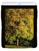 Autumn Colors 8 Duvet Cover