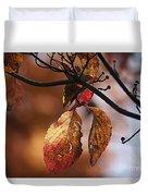 Autumn Dogwood 20121020_13 Duvet Cover