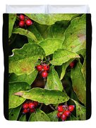 Autumn Dogwood Berries Duvet Cover