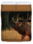 Autumn Elk In Cataloochee Valley Textured Duvet Cover