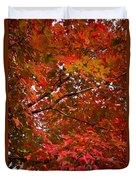 Autumn Foliage-1 Duvet Cover