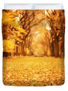 Autumn Foliage - Central Park - New York City Duvet Cover by Vivienne Gucwa