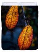 Autumn Gradation Duvet Cover