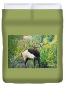 Autumn In Estes Park Duvet Cover