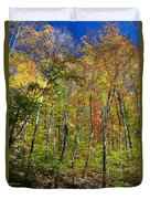 Autumn In Schooley's Mountain Park 2 Duvet Cover