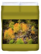 Autumn In The Uinta Mountains Duvet Cover