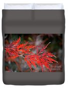 Autumn Japanese Maple Duvet Cover