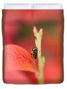 Autumn Ladybird Duvet Cover