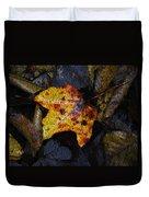 Autumn Leaf On Ground Duvet Cover