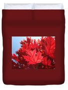 Autumn Leaves Fall Art Bright Red Leaves Baslee Troutman Duvet Cover