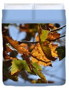 Autumn Leaves Macro 1 Duvet Cover