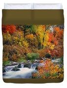 Autumn Magic Duvet Cover