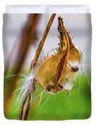 Autumn Milkweed 9 Duvet Cover